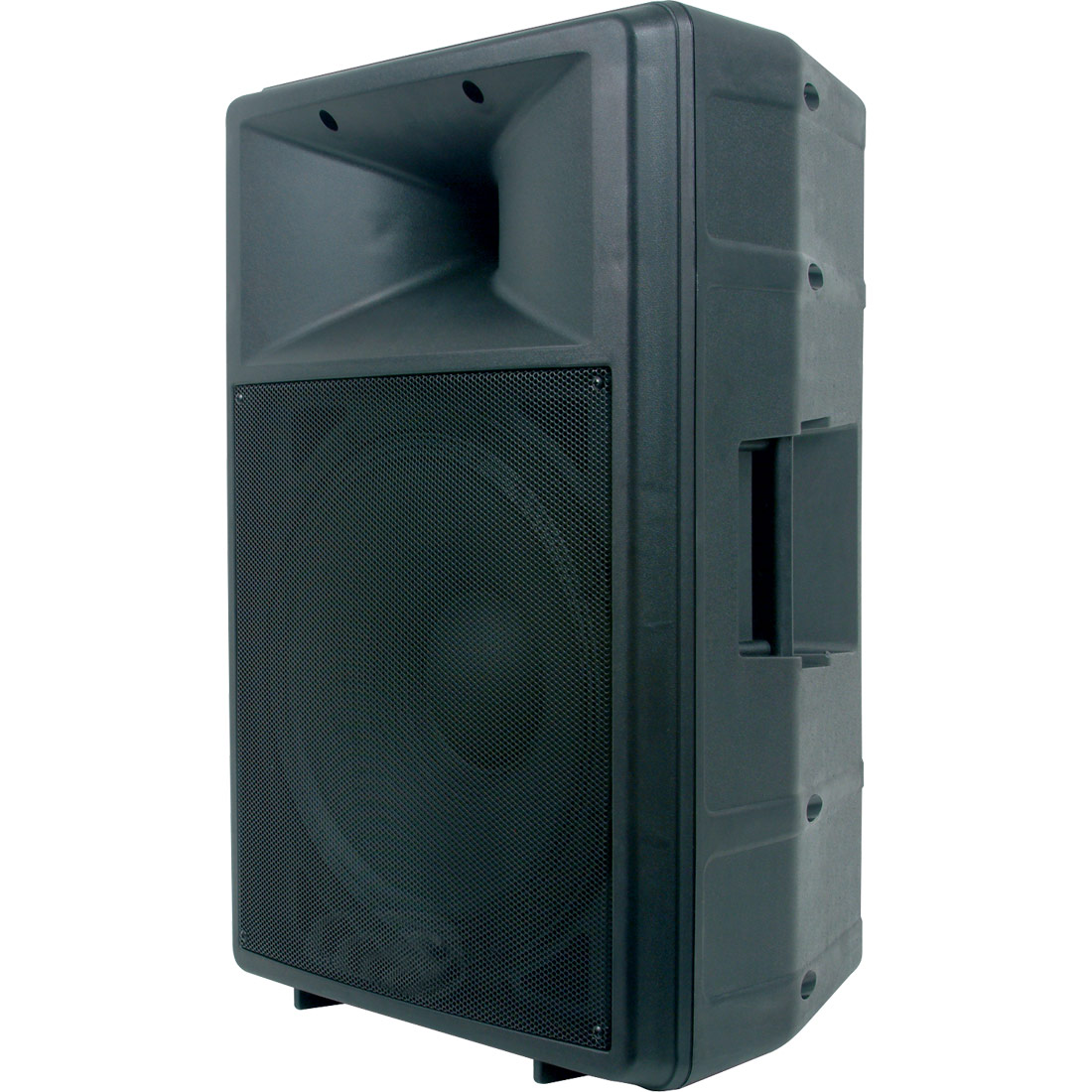 "DLS15P  15"" powered speaker"